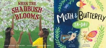 compare and contrast mentor texts