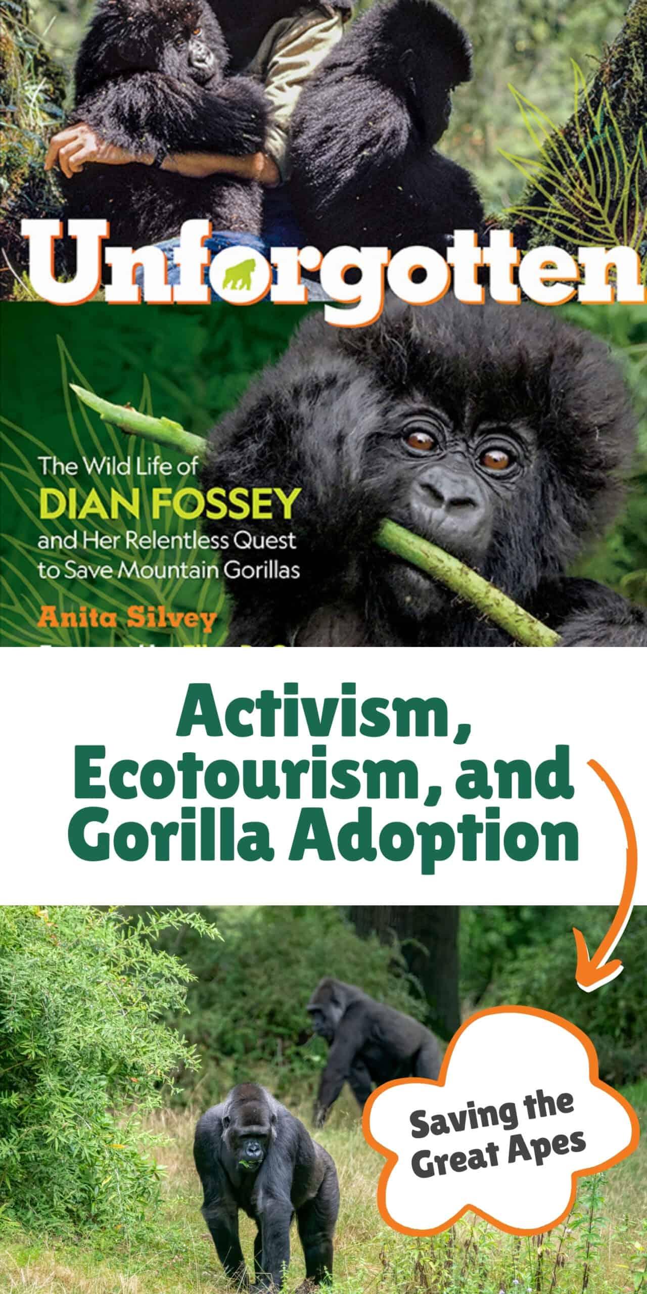 Activism, Ecotourism, and Gorilla Adoption – Saving the Great Apes